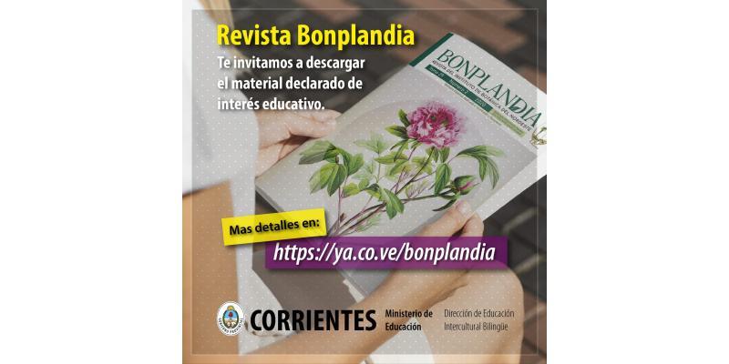 Foto Fondo Novedades